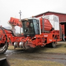 4290 DEWULF RQ3060 potato harvester