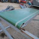 4306 SKALS conveyor 3800x350 mm