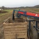 5197 Asa-Lift Combi 1000 carrot harvester
