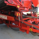 3636 Dewulf RDT superia 2 row potato harvester with bunker