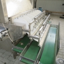 3961 Newtec Astro optical sorter grader