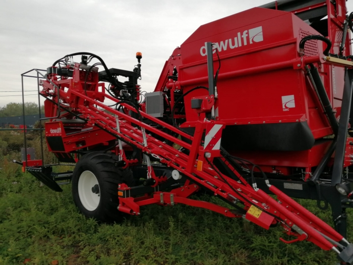 5077 Dewulf GBC carrot harvester with bunker