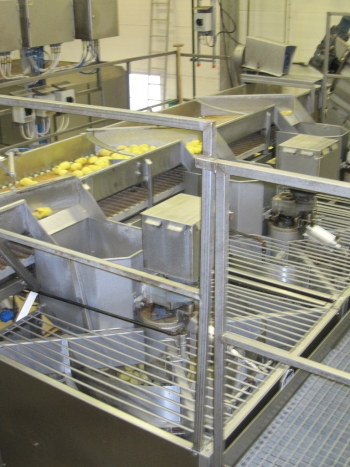 3662 Complete Potato Processing line