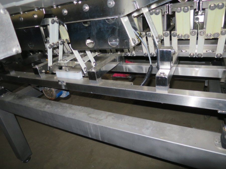 4982 Newtec Celox XT optical sorter for carrots